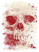 Artistic skull — Stock Vector