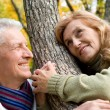 Happy old couple at forest — Stock Photo #10934412