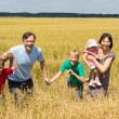 Nice family at field — Stock Photo
