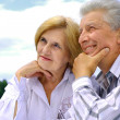 Royalty-Free Stock Photo: Happy Caucasian elderly couple