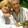 Royalty-Free Stock Photo: Good Caucasian elderly couple