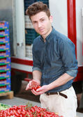 Young attractive man choosing tomatoes — Stock Photo