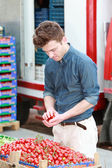 Young man at grocery choosing tomatoes — Stock Photo