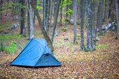 Turistický stan v podzimním lese — Stock fotografie