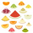 Stock Vector: Fruit Wedge Set