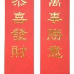 Chinese New Year Banner — Stock Photo #11403094