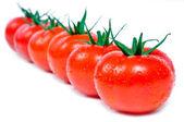 üst üste taze domates — Stok fotoğraf