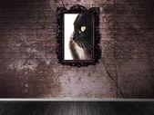 Obrázek s kočkou na tmavou zeď — Stock fotografie