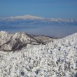 Soft rime and Mt. Gassan in Japan — Stock Photo