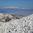 Stock Photo: Soft rime and Mt. Gassin Japan