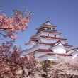 Stock Photo: Aizuwakamatsu Castle and cherry blossom