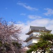 Stock Photo: OdawarCastle and cherry blossom