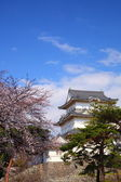 Odawara Castle and cherry blossom — Stock Photo