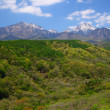 Mt. Yatsugatake of fresh green — Stock Photo