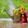 Stock Photo: Gardening equipment