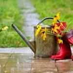 equipo de jardinería — Foto de Stock