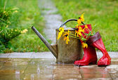 Attrezzature giardinaggio — Foto Stock