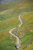 Petite route de campagne à la sierra de gredos — Photo