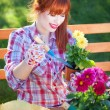 Gardening concept, potting flowers — Stock Photo