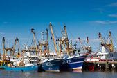 Fish trawlers in the harbor — Stock Photo