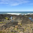 Rocky lava shoreline, Oregon coast. — Stock Photo