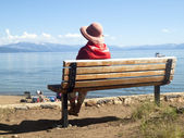 Lake Tahoe scenic beauty panorama. — Stock Photo