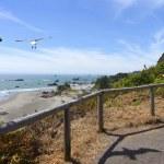 Feeding the seagulls, OR., coastline. — Stock Photo #11369845
