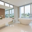 Luxury bathroom — Stock Photo #11497563