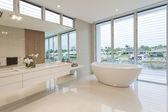 豪华浴室 — 图库照片