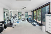 Private gym — Stockfoto