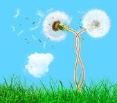 青い空に草で編みこみのタンポポを誇張 — ストック写真