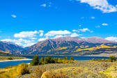 Autumn Landscape in Colorado — Foto Stock