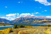 在科罗拉多州的秋景 — 图库照片