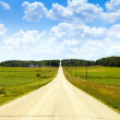 Royalty-Free Stock Photo: Country Road