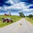AmericCountry Road — Stock Photo #11318183