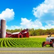 Country Farm Landscape With Tractor — Stock Photo
