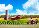 Country Farm Landscape With Tractor — Foto Stock