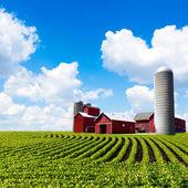 Amerykańska farma — Zdjęcie stockowe