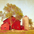 Vintage Farm — Stock Photo #11793789