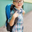 Stock Photo: Time for school. Happy boy.
