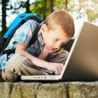 Stock Photo: Boy focused on notebook