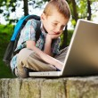 Stock Photo: Lucky boy with laptop