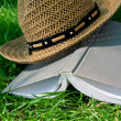 Book and straw hat on grass — Stock Photo #11448004