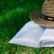 Book and straw hat on grass — Stock Photo #11448056