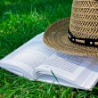 Book and straw hat on grass — Stock Photo #11448091