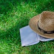 Book and straw hat on grass — Stock Photo #11448129