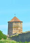 Torre di fortezza — Foto Stock