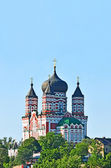 Orthodox cathedral in Feofaniya — Stock Photo