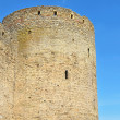 Fortress tower — Stock Photo