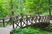 Park bridge — Stock Photo